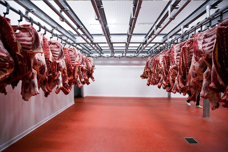 Sistema de automação é a chave para o sucesso e aumento da lucratividade do seu frigorífico
